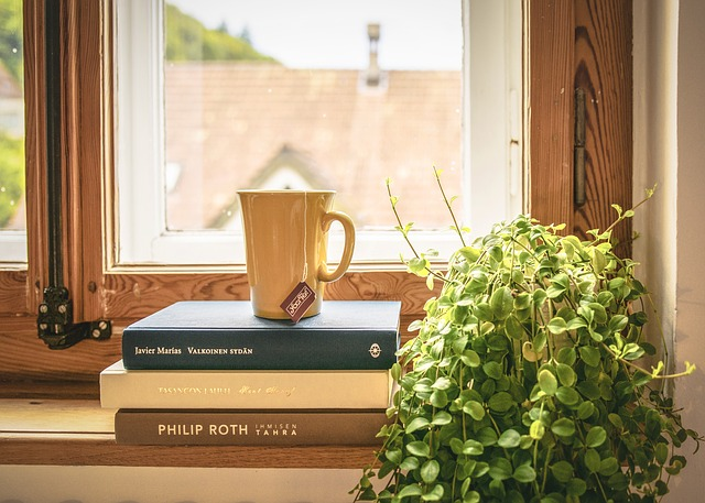 Books and a tea cup on a windowsill, representing buying your first apartment in New Hampshire.