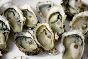 Oysters you can enjoy after moving to Seattle.