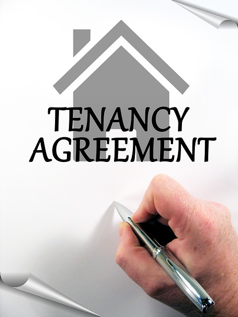 Reading responsibilities as a tenant and signing the agreement