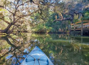 Besides the Florida cities young families will love moving to small towns with untouched nature