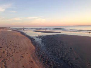 Sunrise in Delray Beach. T